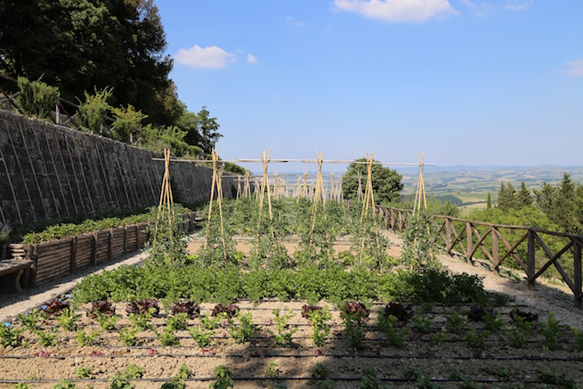 Image of the kitchen garden at Rosewood Castiglion del Bosco in Tuscany