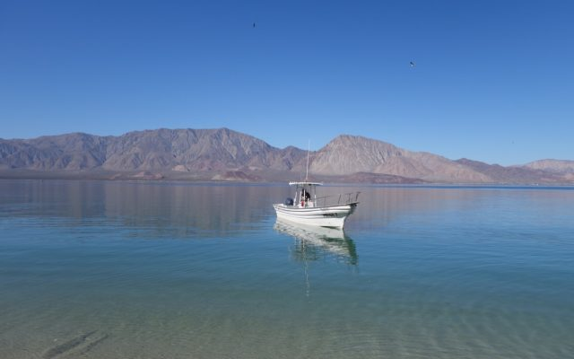 Image of a boat in Bahia de Los Angeles in Baja